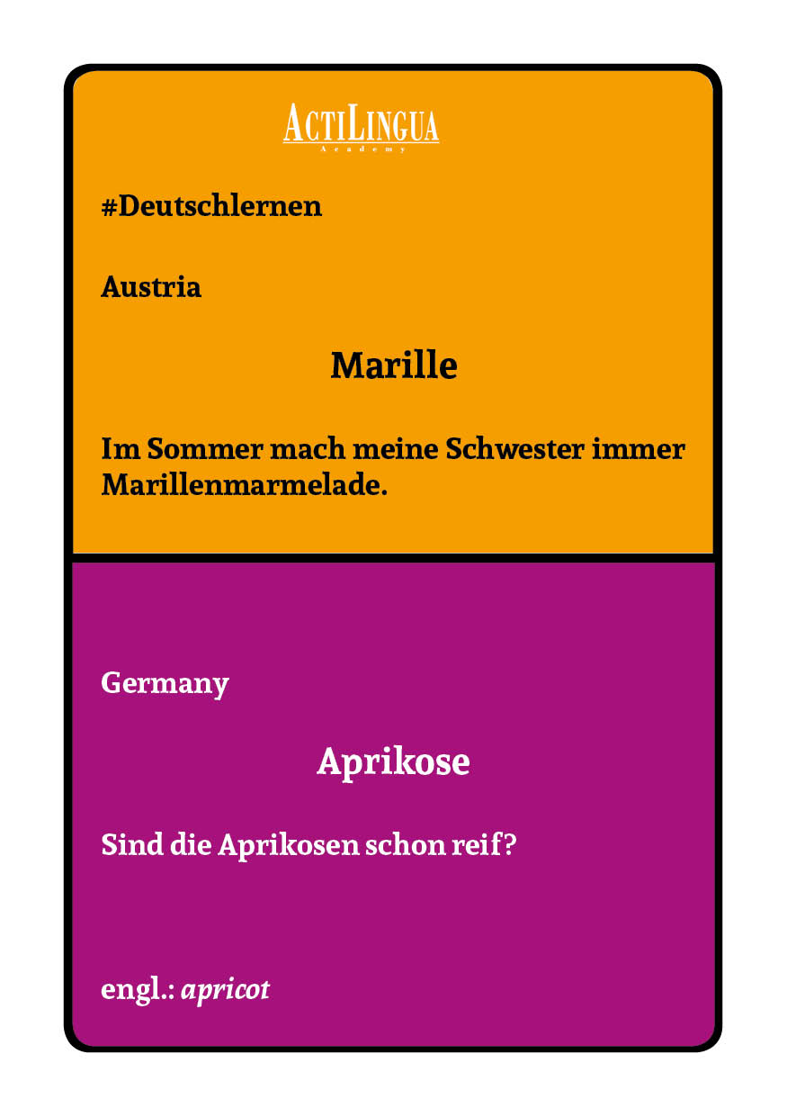 Learn German in Germany and Austria4